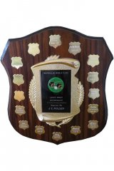 Ladies Minor Championship Shield.jpg